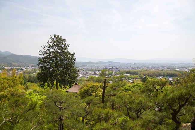 Jojakkoji-寺廟花園-京都景觀