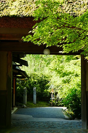 Kaya-gates-Jokoin-寺廟
