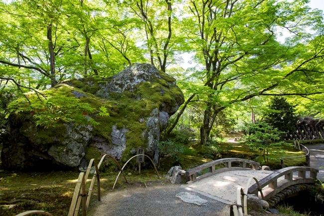 獅子-巨石-Jokoin-寺廟花園