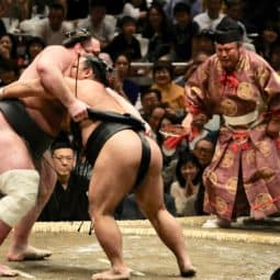how to buy tickets for a sumo match in tokyo