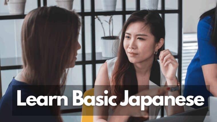 basic japanese words to use