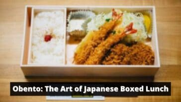 Obento Japanese Boxed Lunch
