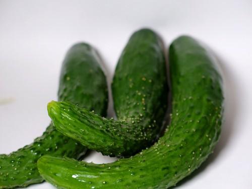 きゅうり-日本人-野菜