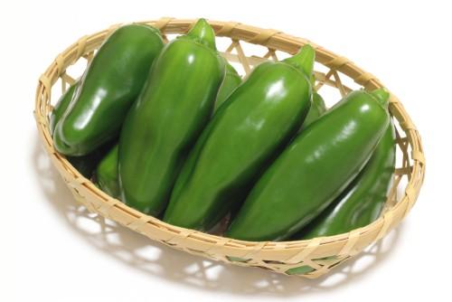 ピマン-日本-野菜